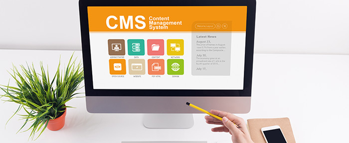 WebWiseChoice - CMS - Content Management Systems