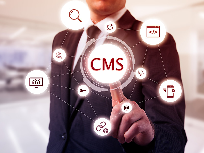 WebWiseChoice - Content Management Systems